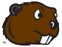 Minot state beaver head logo cutout200x400