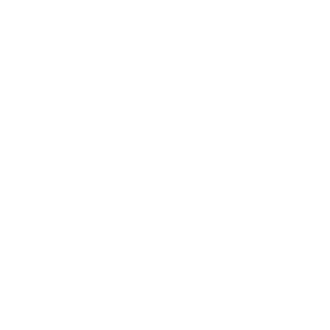 Brenau foot logo white